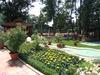 Oleander House3
