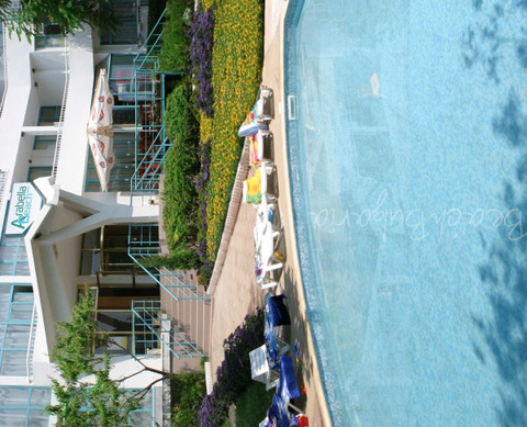 Arabella Beach Hotel6