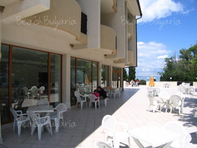 Dolphin Hotel13
