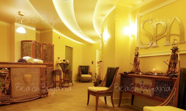 Vineyards Spa Hotel6