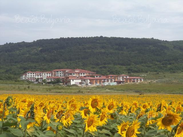 Harmony Hills hotel complex3