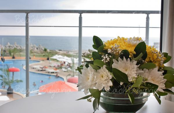 Dolphin Marina Hotel4